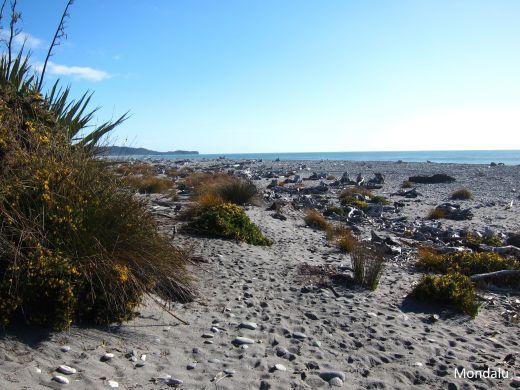 Gillespies beach